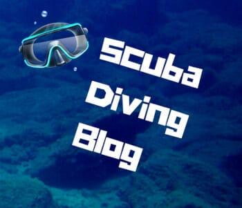 Scuba Diving Blog Logo