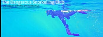 The Dangerous Snorkelling Club Logo